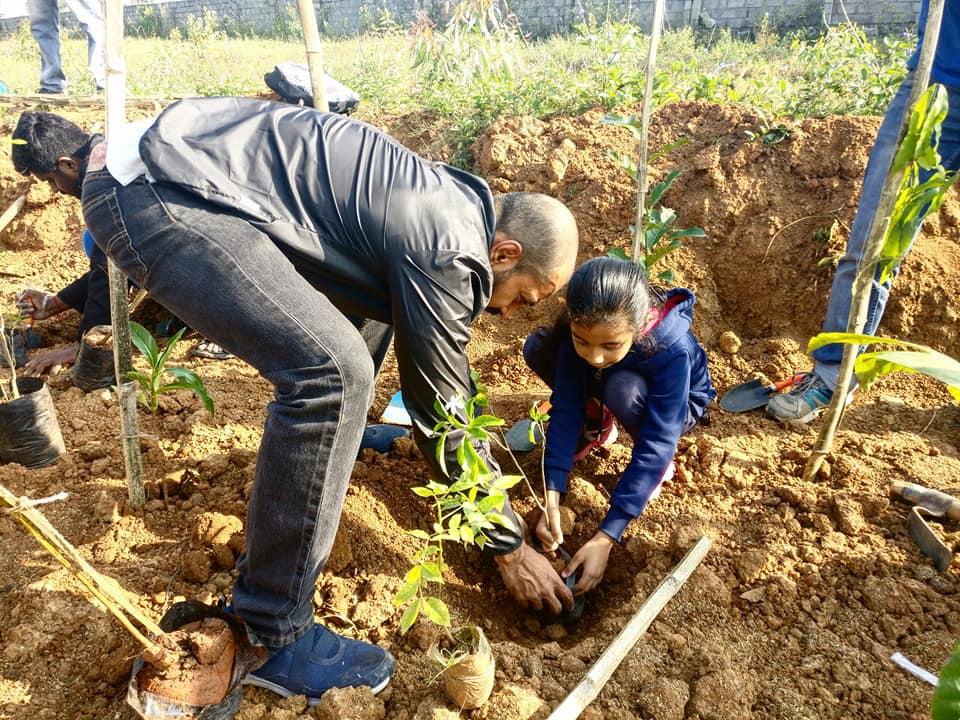 Planting Involvement